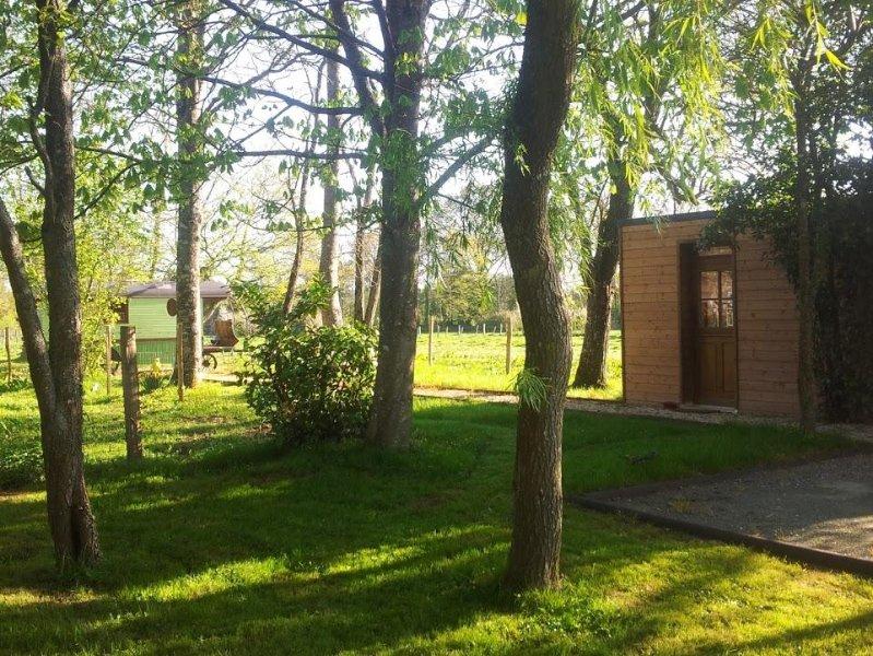 Cabane sous les arbres au coeur du Perche, piscine couverte, chauffée, terrasse, holiday rental in Saint-Germain-des-Grois