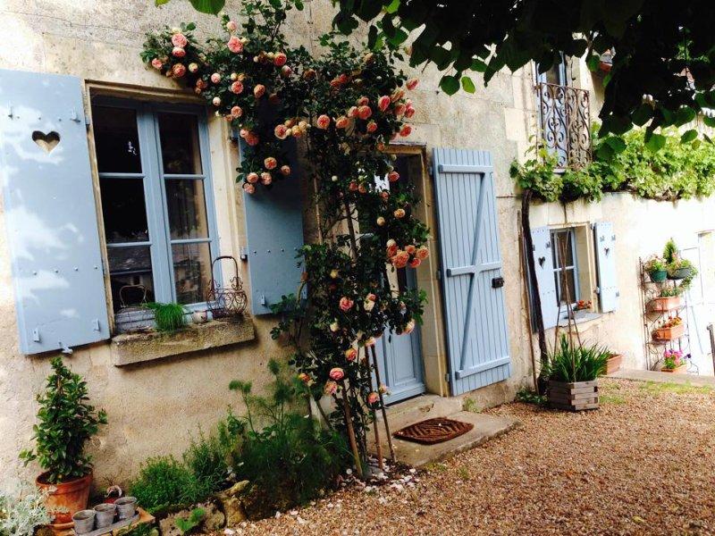 La maison bleue du puy a proximite des chateaux de la loire, vacation rental in Saint-Epain
