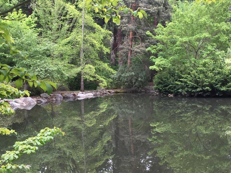 Lithia Park - Upper Duck Pond