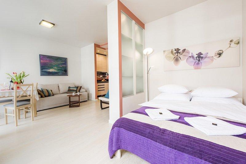 Studio Apartment BIELANY 6, Ferienwohnung in Czosnow