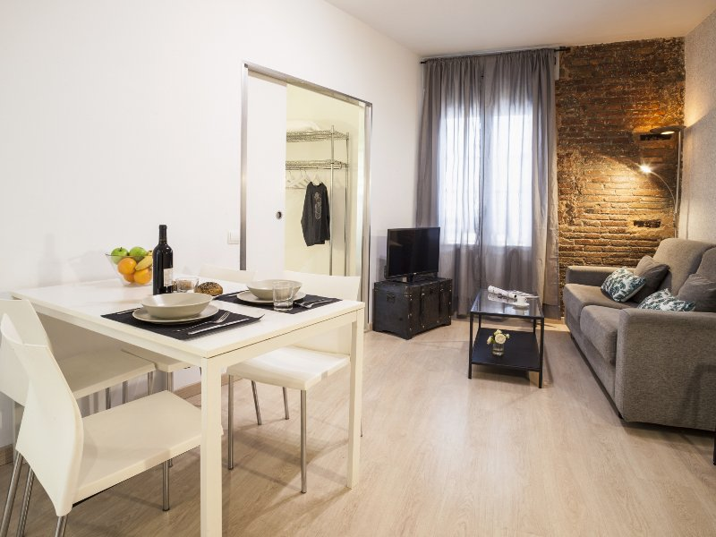 In the hearth of Barcelona two bedroom apartment, vacation rental in Rubi