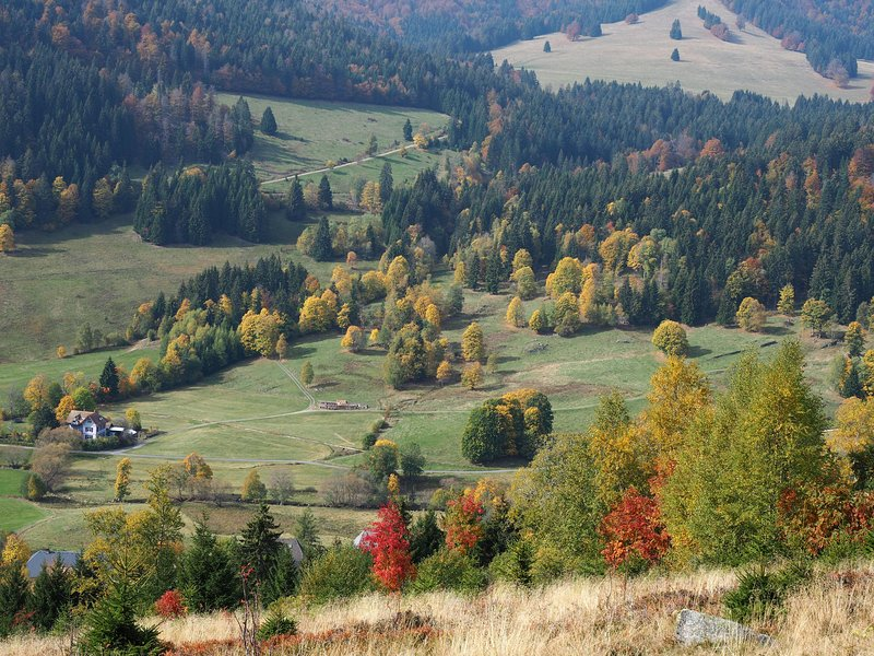 Autumn in the Valley