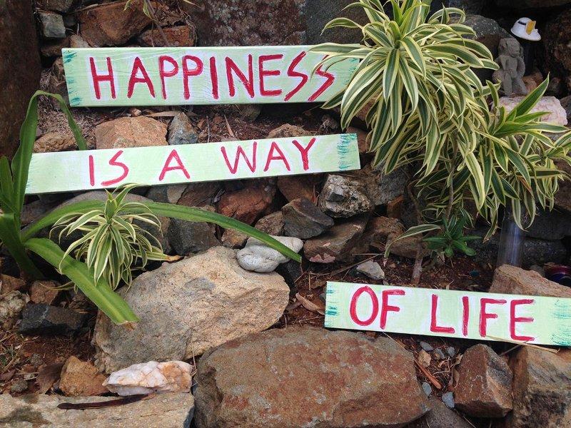 Sloop Jones philosophy and garden art.