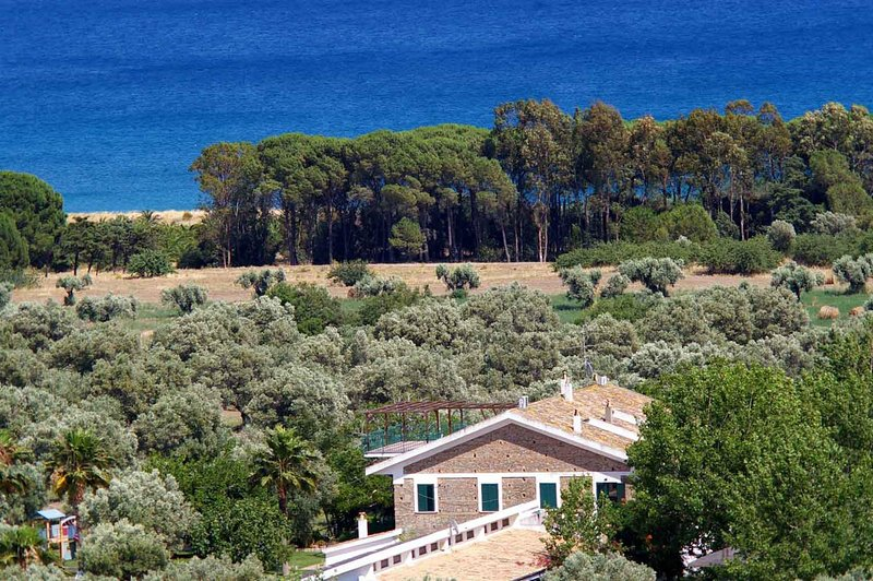 60 hectares of land on the sea with olive trees, pine trees and beach