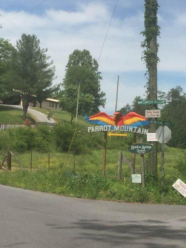 1.4 miles to Parrot Mountain