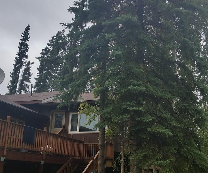 Beautiful Fairbanks apt $67/night with stay of 30 days+, vacation rental in Fairbanks