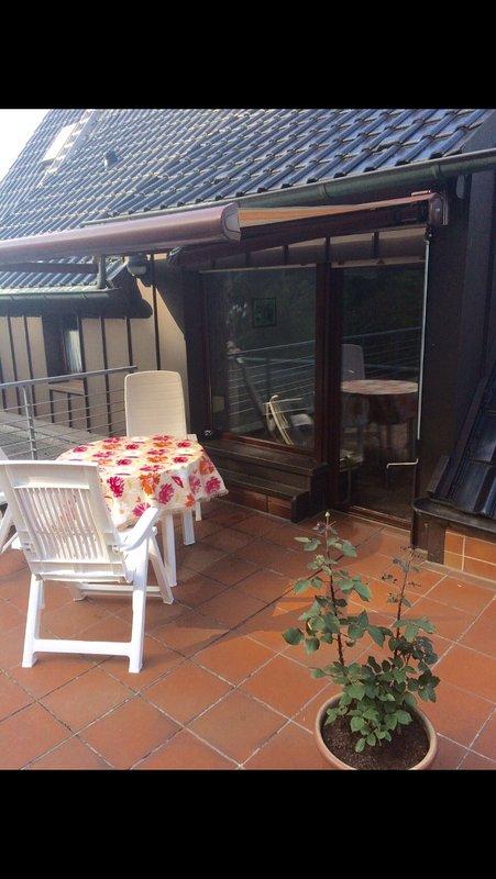 Terrasse et accès au salon