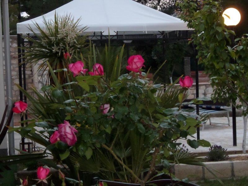 Villa Soleanna Residence, Trilocale azzurro, location de vacances à Coppitella