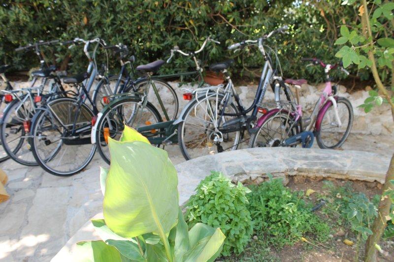 Astralis parking bikes