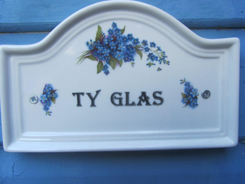 Ty Glas- The Blue House