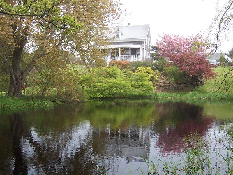 Desde el otro lado del estanque en primavera