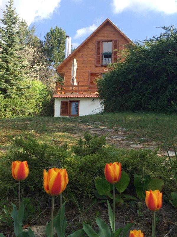 Casa Cervatillo en el jardín