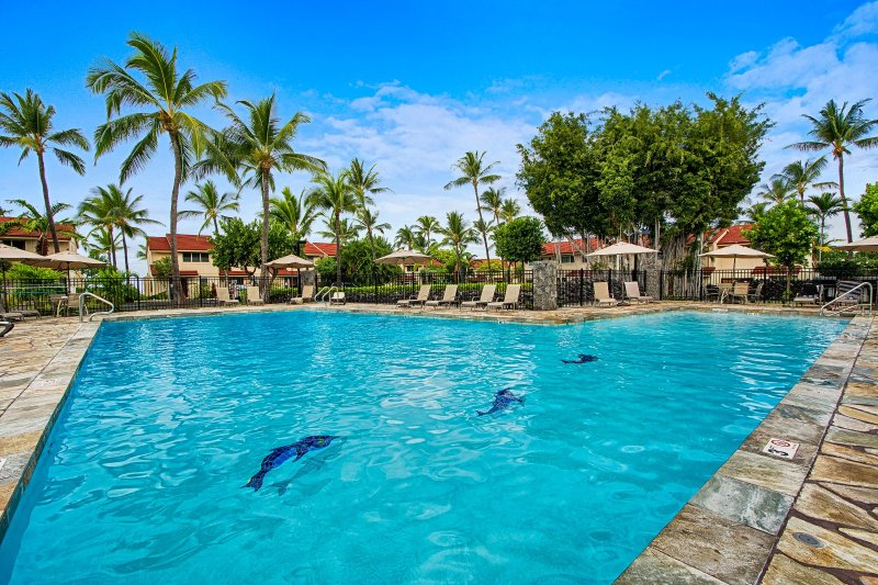 Oceanfront ground floor condo for large groups with pool, walk to beaches, shops, vacation rental in Keauhou
