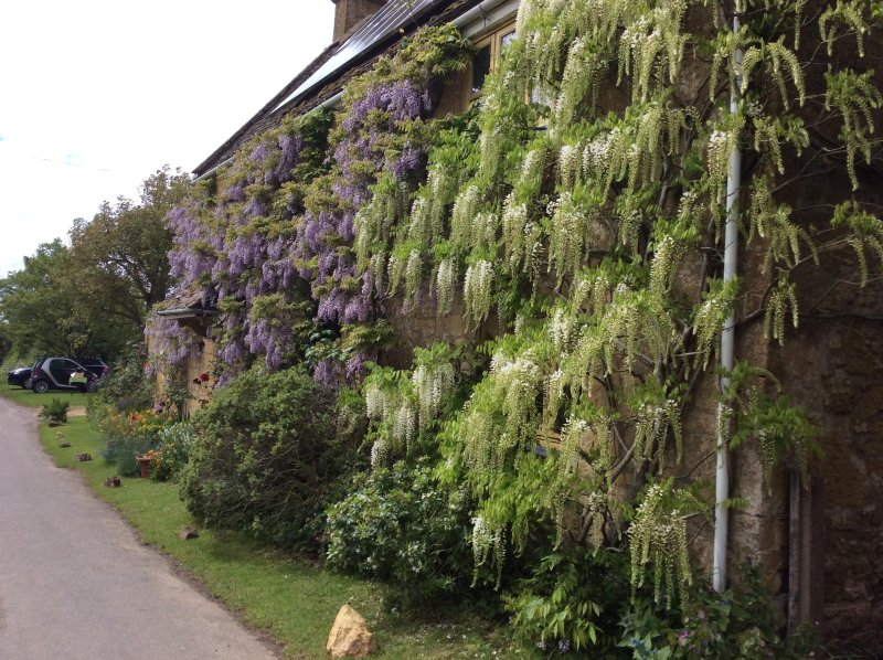Cotswolds and Stratford-upon-Avon Farmhouse B&B, holiday rental in Wickhamford