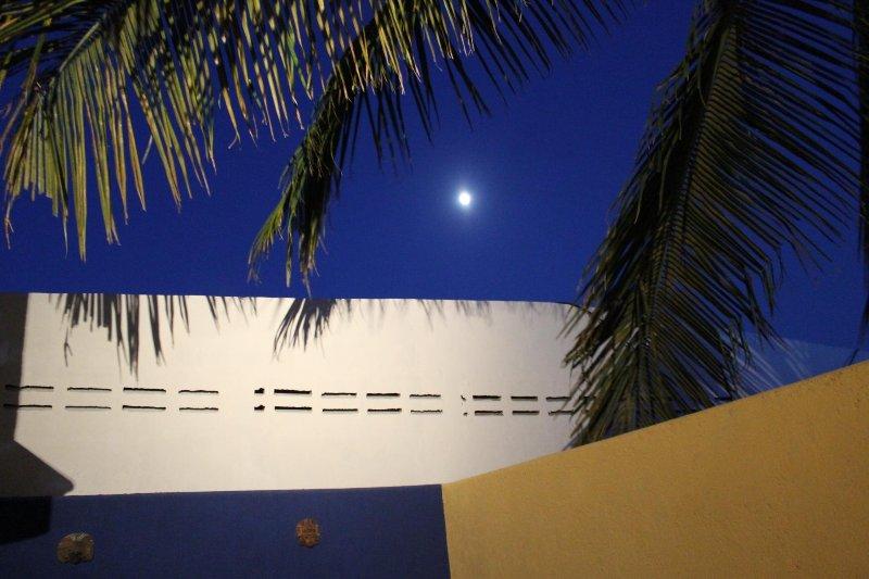 zone arrière patio la nuit