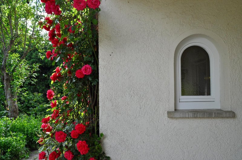 Stadtnah und doch im Grünen / Close to the city and still at the countryside, holiday rental in Balingen