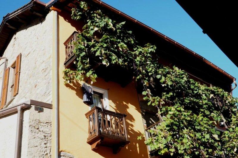 CASA LEONE - CÀ LEON - 2 Balkone der 2-Zi- PANORAMICA-App. in Breno / Alto Malcantone / Tessin