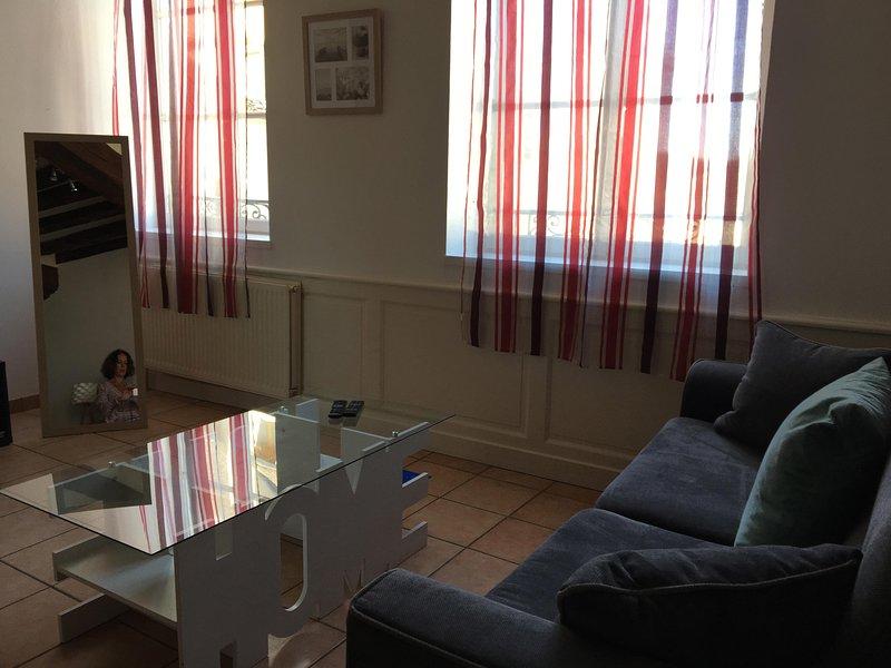 Appartement Le Coche d'Eau à Auxerre, holiday rental in Chablis