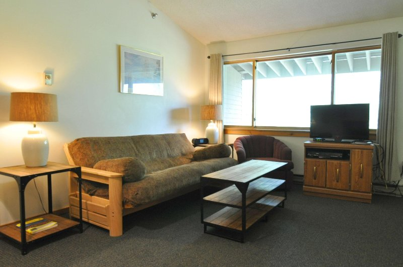 Living Area with Murphy Bed and Futon