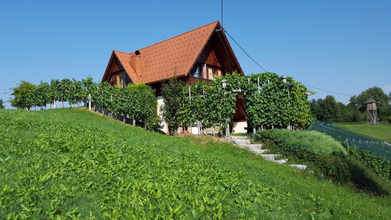 Vineyard Cottage - Zidanica Berus, holiday rental in Ratez