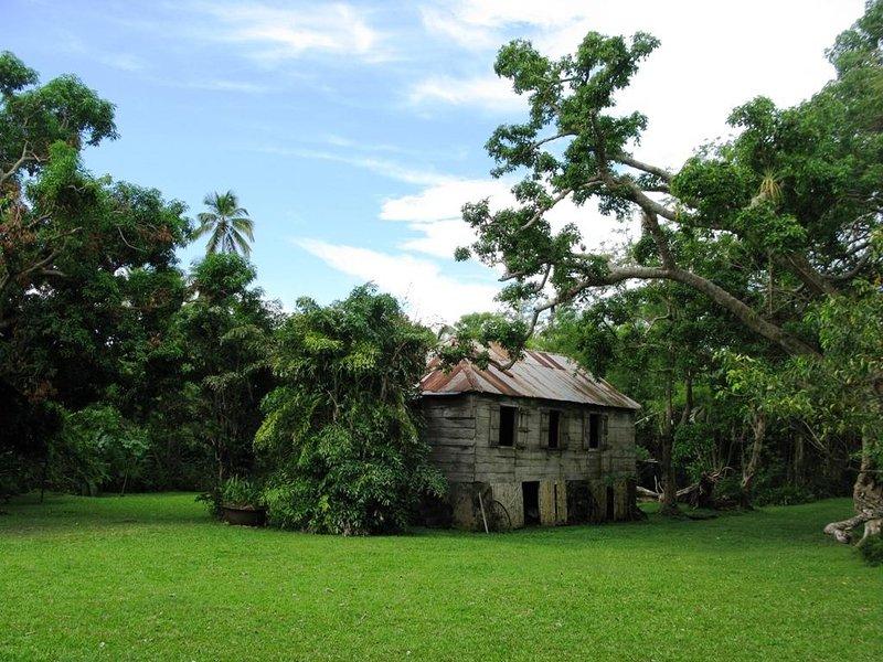 plantation grounds
