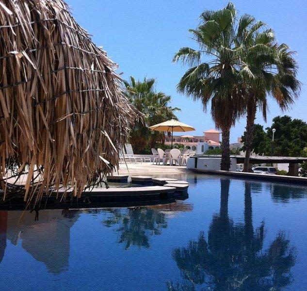 piscine principale avec bain à remous, des chaises longues, zone patauger et nager jusqu'à comptoir de bar.