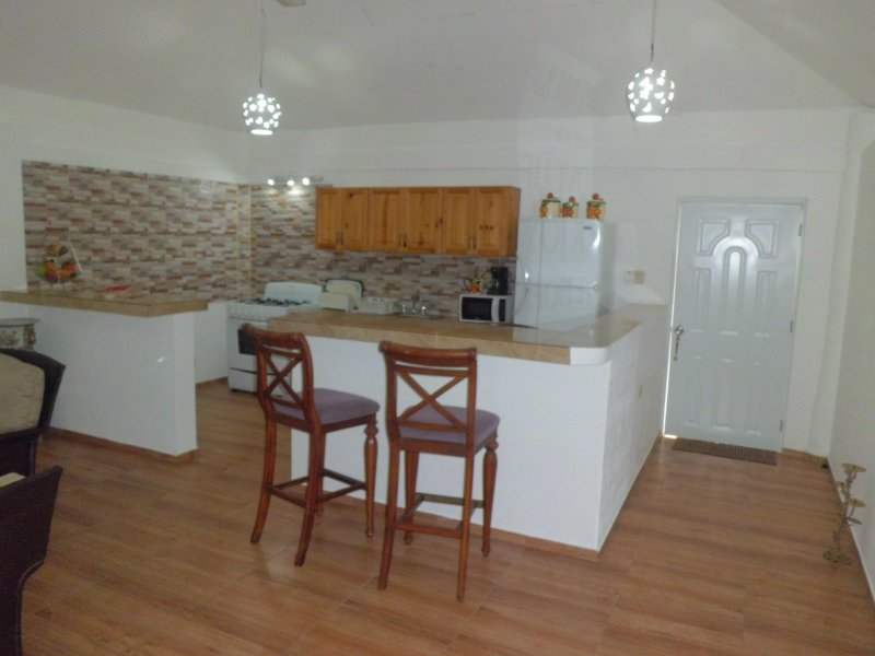 overview of kitchen and counters