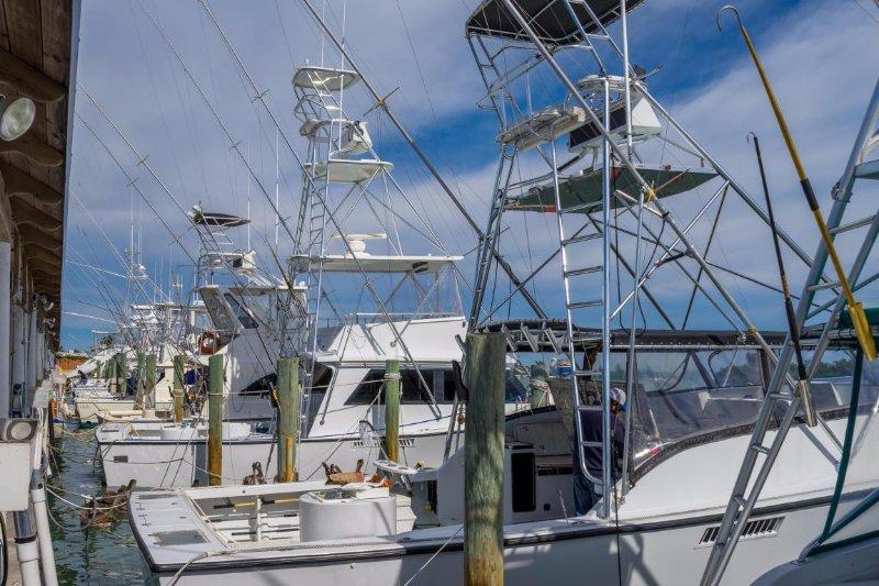 Key Colony Beach Marina filled with many fishing charter boats