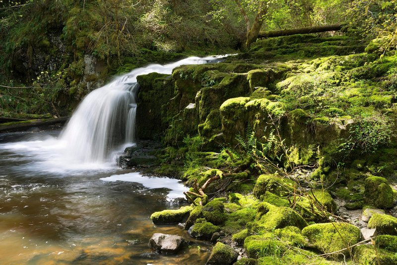 Go for a hike and check out a waterfall.  There are lots of hiking trails in the surrounding area.
