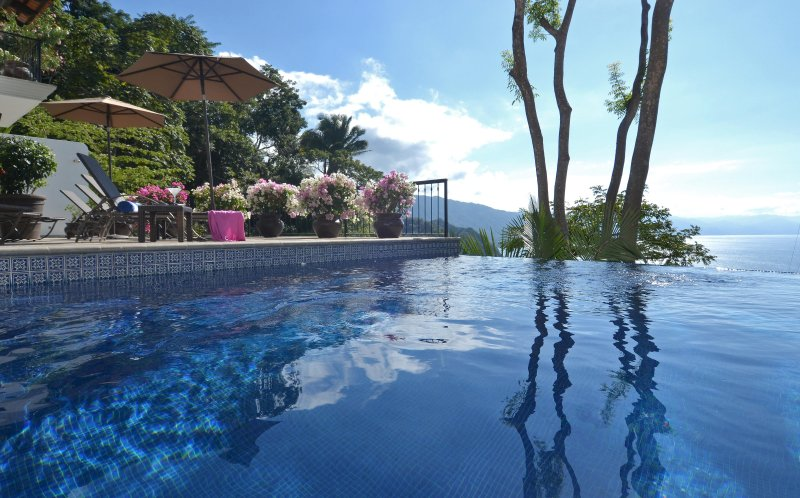 Extensive sunbathing terrace with infinity pool and stunning bay views