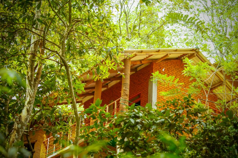 Ella Green Cottages Surrounded by lush green tropical forest