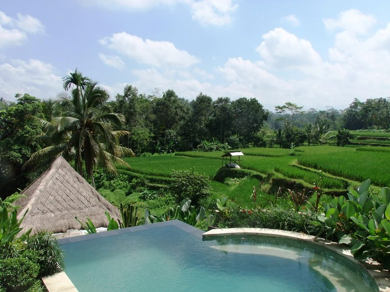 7 bedroom private villa Kembang Bali Ubud, holiday rental in Bresela