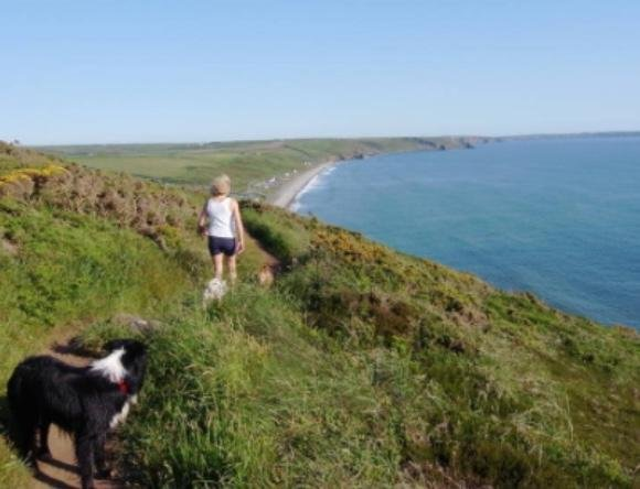 Pembrokeshire coastal path 2 miles from chalet