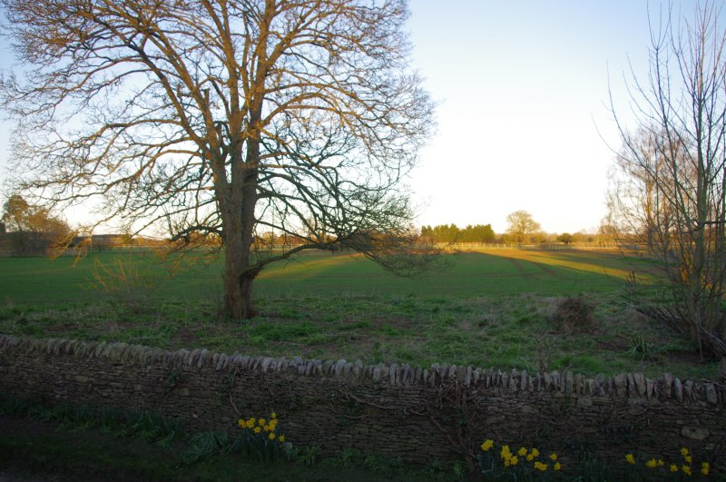 view over fields to front
