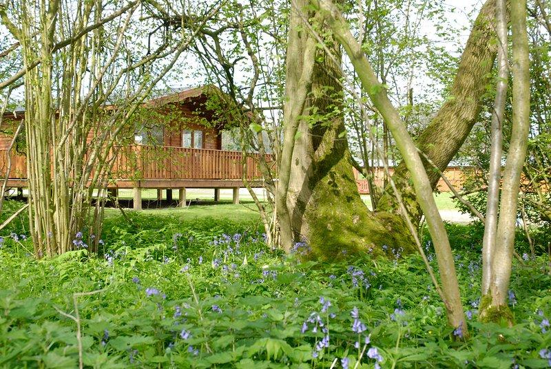 Luxury 3 bedroom Scandinavian Lodge, holiday rental in Otterbourne