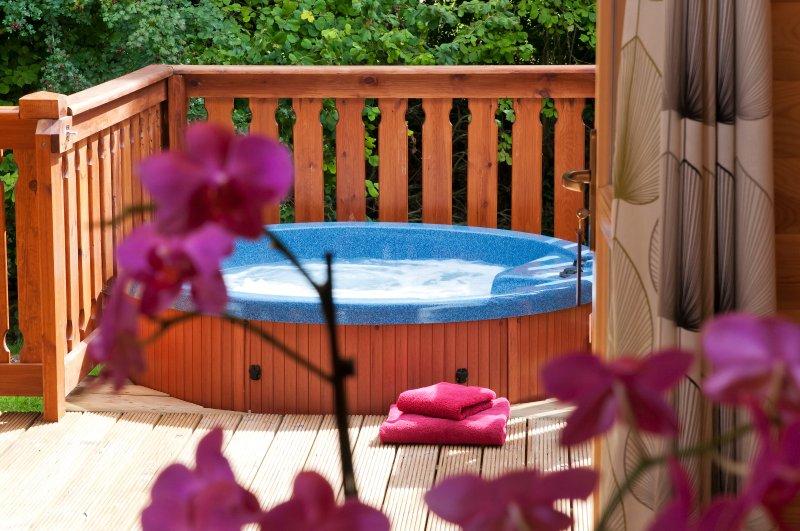 Luxury 2 Bedroom Scandinavian Lodge with HOT TUB, location de vacances à Houghton