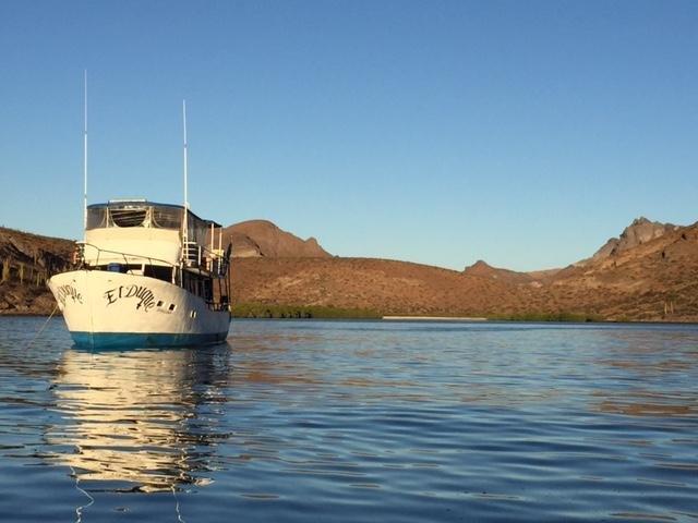 Adventures in the Sea of Cortez, holiday rental in El Centenario