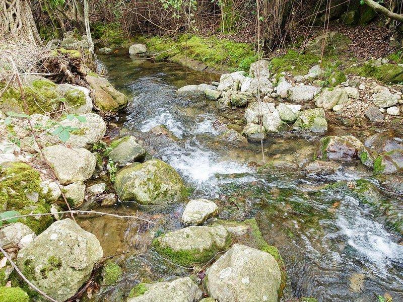 rio Gaidovar