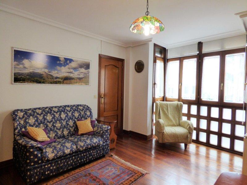 Bonito piso céntrico y a 2min de la playa, holiday rental in Zumaia
