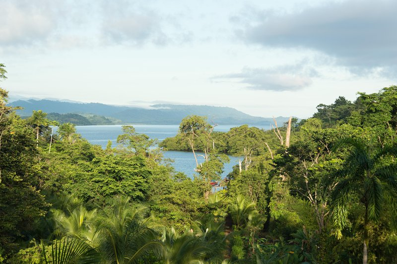 Go Bananas Now Rainforest Lodge, alquiler de vacaciones en Isla San Cristobal