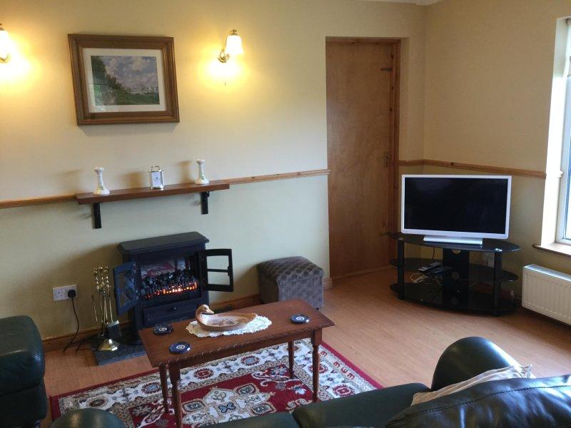 confortable salón con chimenea y TV / Radio / DVD
