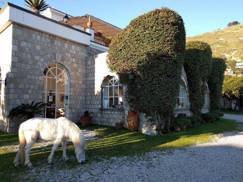 Loft per 4 persone con 2 bagni, cucina e piscina, holiday rental in Barano d'Ischia