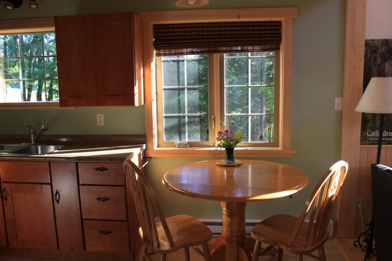 Kitchen has lovely forest view