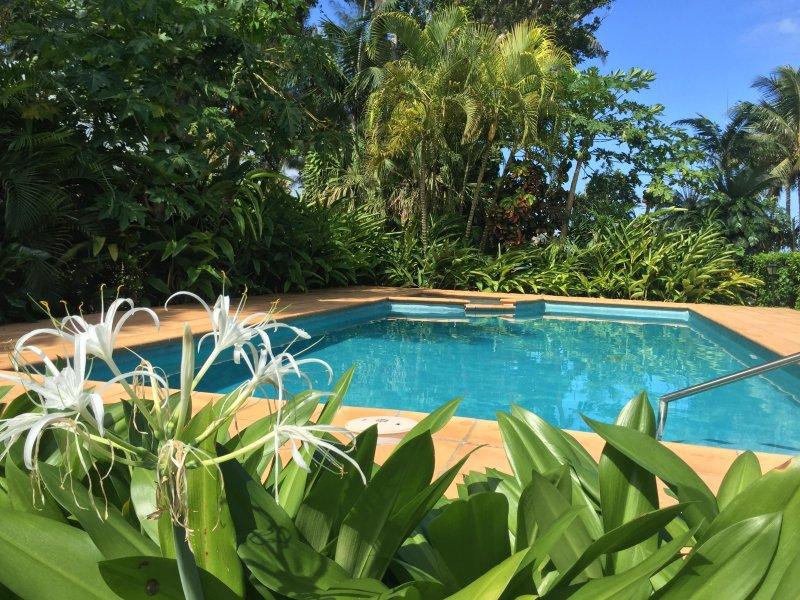 Vas a tener que decidir si para refrescarse en la piscina o ir a la laguna para el buceo