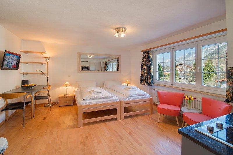 Studio Chloe Zermatt - Mountain Exposure Good Value Apartment Chalet in Zermatt