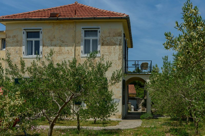 authentic house, holiday rental in Kolocep Island