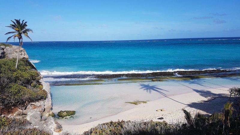 La plage de Sam Seigneur à marée basse (15 minutes à pied)