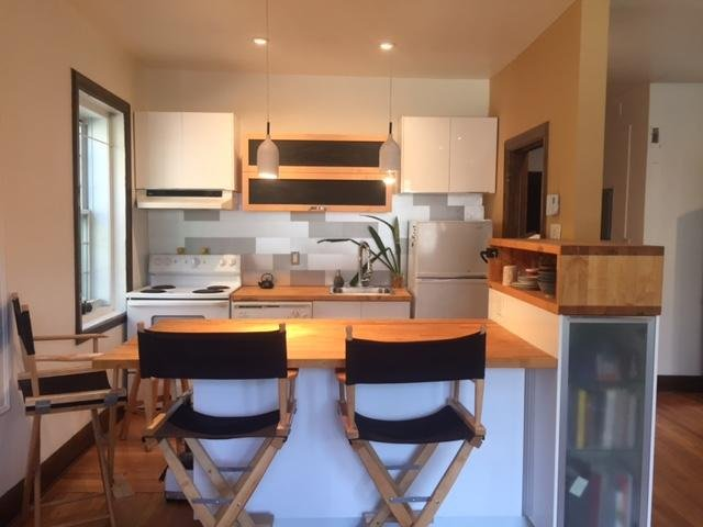 Beautiful Calm  Apartment in downtown Montreal, vacation rental in Montreal