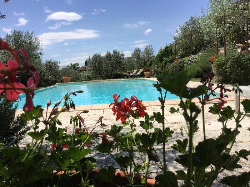 Villa Stefania Unit 1 Cortona, holiday rental in San Pietro a Cegliolo
