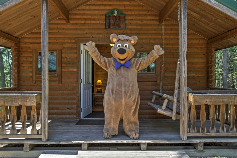 Sag Hallo zu Yogi Bear - Dein freundlicher Nachbar!